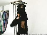 Crazy  Sandra is a bear