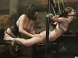 Gorgeous bitch into bondage as she gets sexual arousal through whips, slaps and clips then fist and dildo fuck by a pussy hungry lesbian